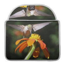 Hummingbird Bird Floral Wildlife Animal Flower MacBook Pro Sleeve