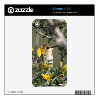 Hummingbird Bird Floral Wildlife Animal Flower Skin For The iPhone 4