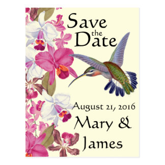 Hummingbird Bird Flowers Orchid Floral Save Date Postcard