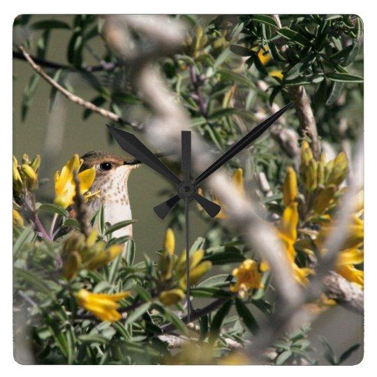 Hummingbird Bird Flowers Wildlife Floral Animals Square Wall Clock