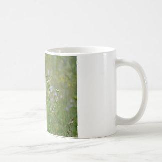 Hummingbird: Bird in Flowers Classic White Coffee Mug