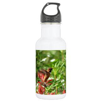 Hummingbird  bird red flower 18oz water bottle