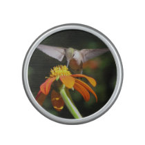 Hummingbird Bird Sunflower Flower Floral Speaker