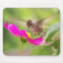 Hummingbird Bird Wildlife Animal Floral Mouse Pad