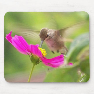Hummingbird Bird Wildlife Animal Floral Mouse Pad