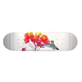 Hummingbird Bird Wildlife Animal Floral Skateboard