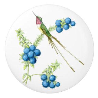 Hummingbird Bird Wildlife Animal Garden Knob Ceramic Knob