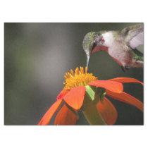 Hummingbird Bird Wildlife Sunflower Flower Floral Tissue Paper