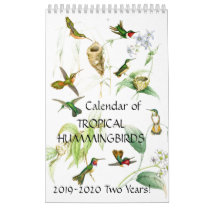 Hummingbird Birds Flower Animal 2019 2020 Calendar