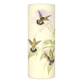 Hummingbird Birds Flowers Floral Vintage Botanical Flameless Candle