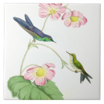 Hummingbird Birds Flowers Floral Wildlife Animals Ceramic Tile