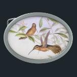 "Hummingbird Birds Flowers Floral Wildlife Animals Oval Belt Buckle<br><div class=""desc"">Gorgeous vintage botanical fine art of an exotic Hummingbird Bird and habitat Flowers is on this Belt Buckle.</div>"