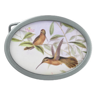 Hummingbird Birds Flowers Floral Wildlife Animals Oval Belt Buckle