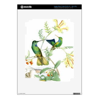 Hummingbird Birds Flowers Floral Wildlife Animals Skins For iPad 3