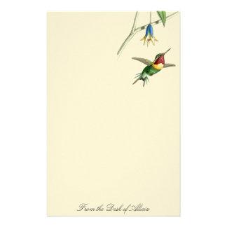 Hummingbird Birds Flowers Wildlife Animals Floral Stationery