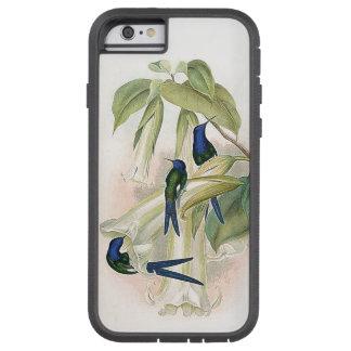Hummingbird Birds iPhone 6 Case