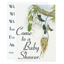 Hummingbird Birds & Nest Baby Shower Invitation