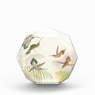 Hummingbird Birds Wildlife Animals Flowers Floral Award