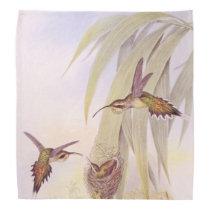 Hummingbird Birds Wildlife Animals Flowers Floral Bandana