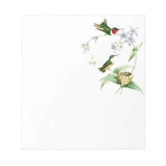 Hummingbird Birds Wildlife Animals Flowers Floral Notepad