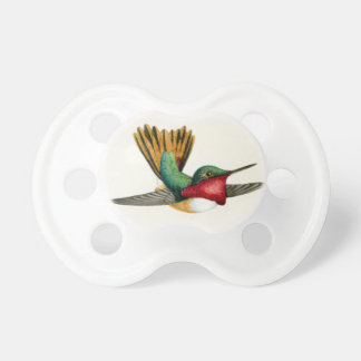 Hummingbird Birds Wildlife Animals Flowers Floral Pacifier