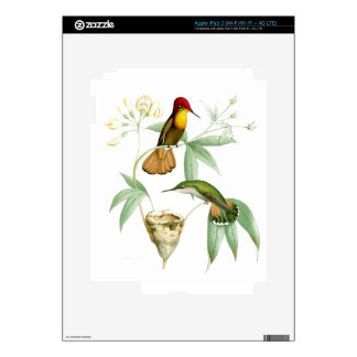 Hummingbird Birds Wildlife Animals Flowers Floral Skin For iPad 3