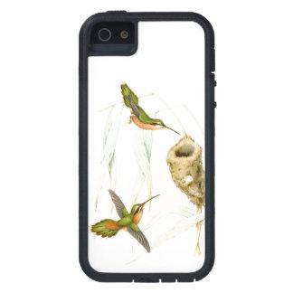 Hummingbird Birds Wildlife Animals Nest iPhone SE/5/5s Case