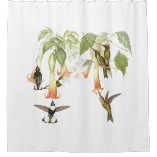 Hummingbird Birds Wildlife Flower Floral Garden Shower Curtain