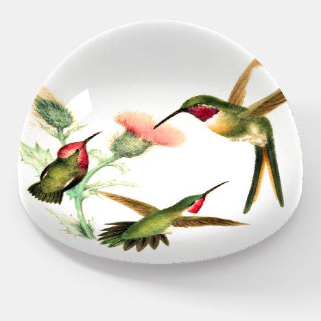 Hummingbird Birds Wildlife Flower Paperweight