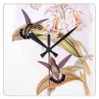 Hummingbird Birds Wildlife Flowers Animals Floral Square Wall Clock