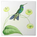 "Hummingbird Birds Wildlife Flowers Floral Animals Ceramic Tile<br><div class=""desc"">Gorgeous vintage botanical fine art of   an  exotic tropical Hummingbird Bird and habitat Flowers is on this Tile.</div>"