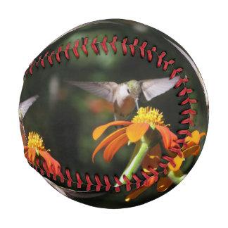 Hummingbird Birds Wildlife Flowers Floral Baseball