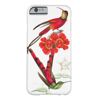 Hummingbird Birds Wildlife Flowers iPhone Case