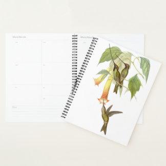 Hummingbird Birds Wildlife Flowers Planner