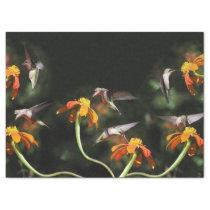 Hummingbird Birds Wildlife Sunflower Flower Floral Tissue Paper