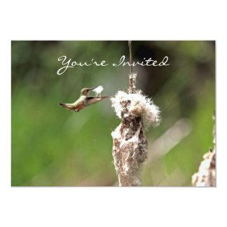"Hummingbird Building a Nest 5"" X 7"" Invitation Card"