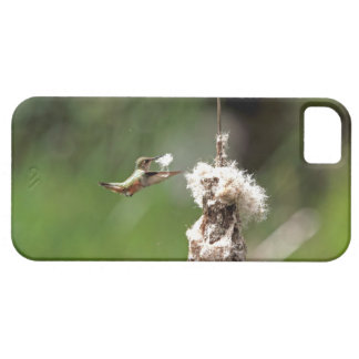 Hummingbird Building a Nest iPhone 5 Covers