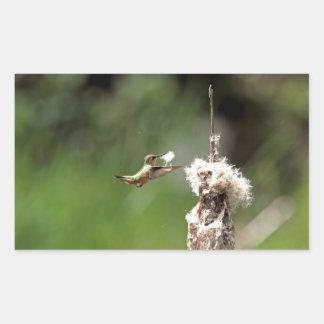 Hummingbird Building a Nest Rectangular Sticker