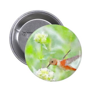 Hummingbird Pinback Buttons