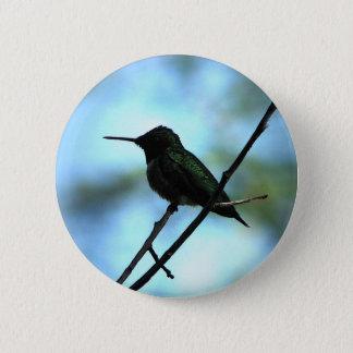 Hummingbird Button