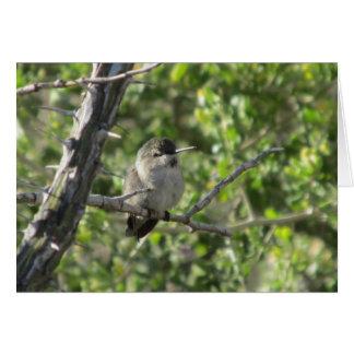 Hummingbird Stationery Note Card