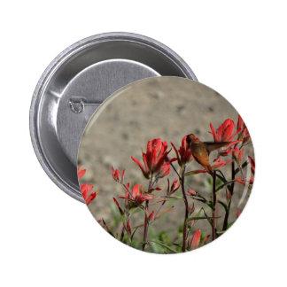 Hummingbird cardinal flowers pinback buttons