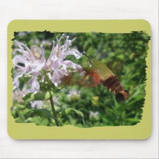 Hummingbird Clear Wing Moth Coordinating Items Mousepad