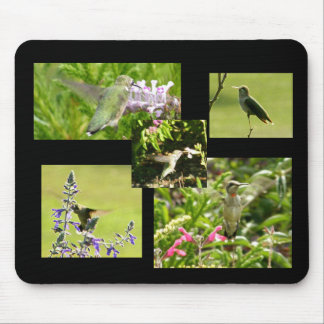 Hummingbird Collage Mouse Pad