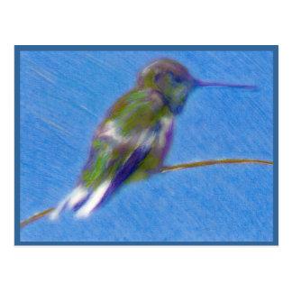 Hummingbird Colored Pencil Drawing Postcard