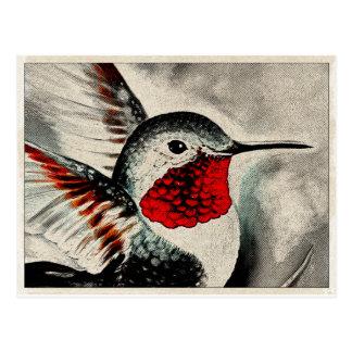 Hummingbird Comic Postcard