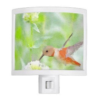 Hummingbird Nite Lite