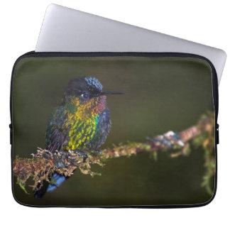 Hummingbird Computer Sleeve
