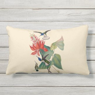 Hummingbird Coral Bean Outdoor Lumbar Pillow