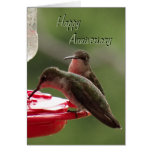 Hummingbird Couple on feeder- any occasion Card